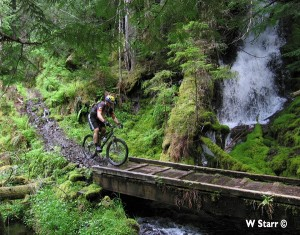 Mountain bike The North Umpqua Trail!